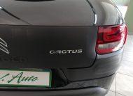CITROEN C4 Cactus 1.6 bluehdi Shine 100cv